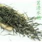 2017年新茶 信阳毛尖茶 直条芯子,散装茶批发 绿茶 一件代发