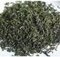山东日照绿茶散装 健康绿茶批发茶厂直销