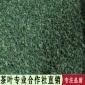乌龙茶黄金桂浓香清香型散装批发广华茶叶GH_02HD