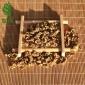 2019新茶厂家批发英红九号散茶叶蜜果香云南古树红茶凤庆滇红金螺