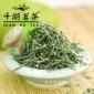 五峰芽毛尖 绿茶 原产地散茶批发 千湖茗茶新茶春茶 特产 茶叶