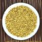 批发供应 散装 苦荞茶 金黄色 黄金苦荞 大颗粒苦荞 四川黑苦荞