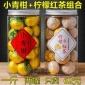 柠檬菊柠檬红茶小柠红柠菊滇红茶小青柑纯料青皮普洱茶500g二罐装