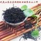 红茶 正山小种春茶特级 武夷山桐木关茶叶 新茶 散装批发500克