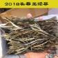 云南普洱茶永德大雪山晒青长把把茶把子茶生茶散装手工制作